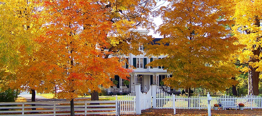 Fall-Maintenance-for-Your-CT-Home.jpg